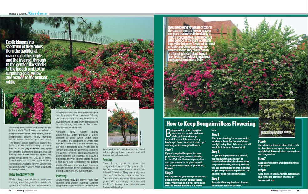 gardens - page 2